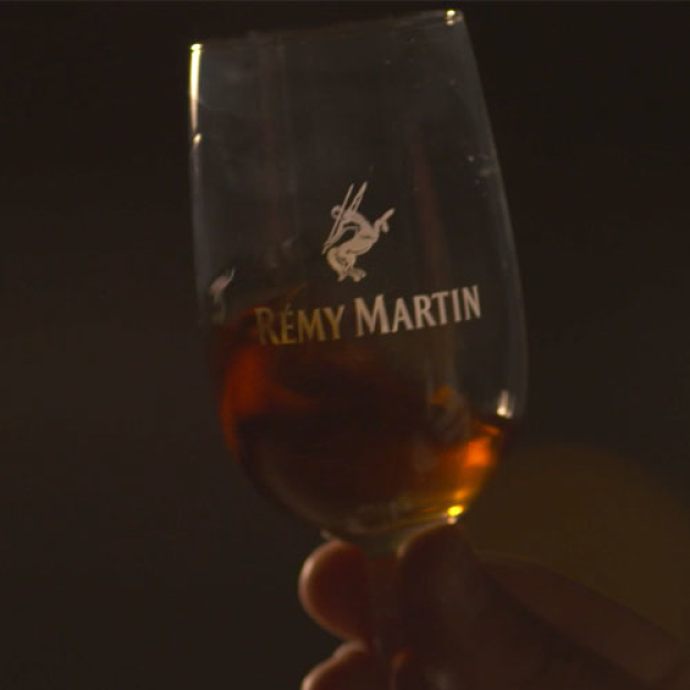 Rémy Martin - Team Up for Excellence